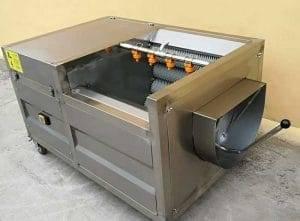 Semi-Automatic Carrot Washing Peeling Machine
