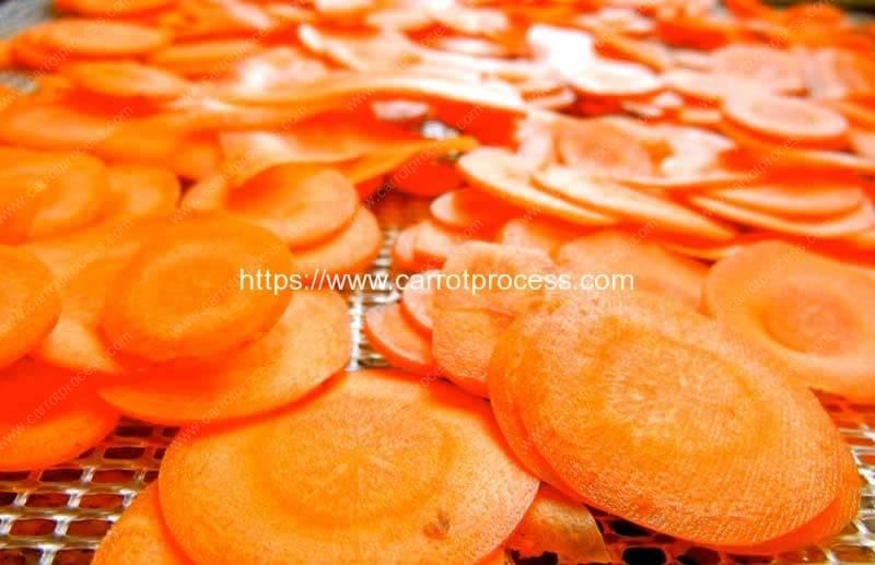 Carrot-Slice-Carrot-Chips-Dryer-Oven