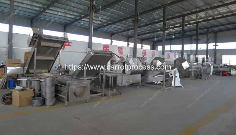 Carrot-Snacks-Production-Line-Factory-Visit-Romiter-Machinery