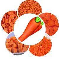 Feature01-Carrot-Cutting-Machine-for-Stick-Chips-and-Cube-Shape