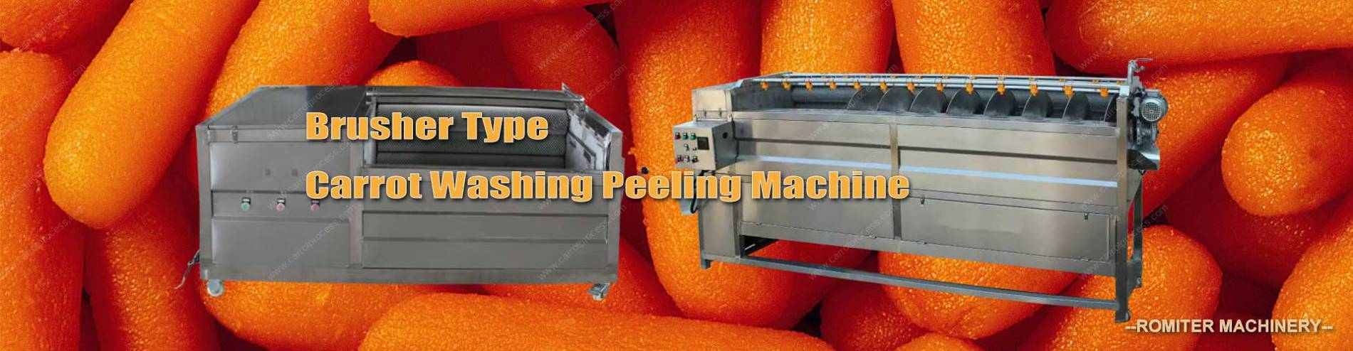 Banner02-Automatic-Brush-Type-Carrot-Washing-Peeling-Machine-Manufacture-and-Supplier
