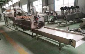 4000kgh-Brush-Type-Carrot-Washing-Machine
