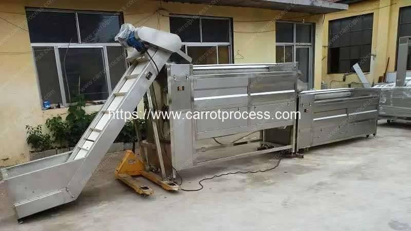 Large-Double-Brush-Washing-Design-Capacity-Carrot-Washing-Machine