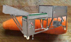 Automatic-Carrot-Top-and-End-Cutting-Machine-with-Hopper