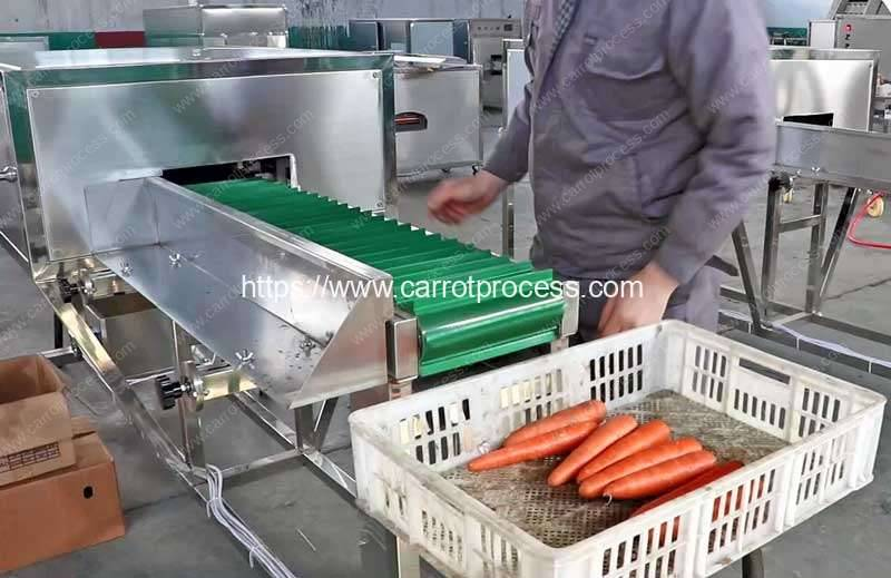 Automatic-Carrot-Top-and-End-Cutting-Machine
