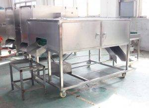Automatic-Carrot-Double-Head-Cutting-Machine-for-USA-Customer
