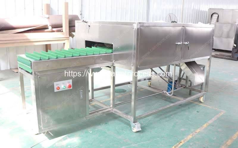 Automatic-Carrot-Double-Head-Topper-Cutting-Machine-for-USA-Customer