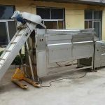 Large Capacity Carrot Washing Machine