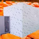 Energy Saving Heat Pump Carrot Chips Dryer Oven