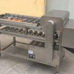Automatic Carrot Set-Size Segment Cutting Machine for Poland Customer