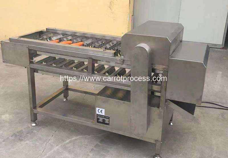 Automatic-Carrot-Segment-Cutting-Machine-for-Poland-Customer