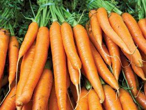 High-Nutritional-Carrots