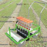 Manual Type Carrot Seeds Planter