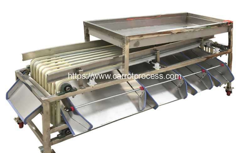 Automatic-Carrot-Segment-Size-Grading-Sorting-Machine