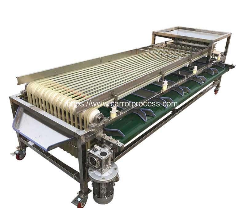 Automatic-Carrot-Segment-Size-Sorting-Machine